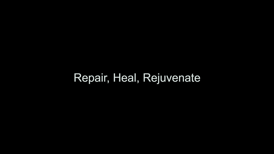 Repair, Heal, Rejuvenate